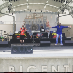 Stone Soul Picnic 2015 Performances! [PHOTOS]