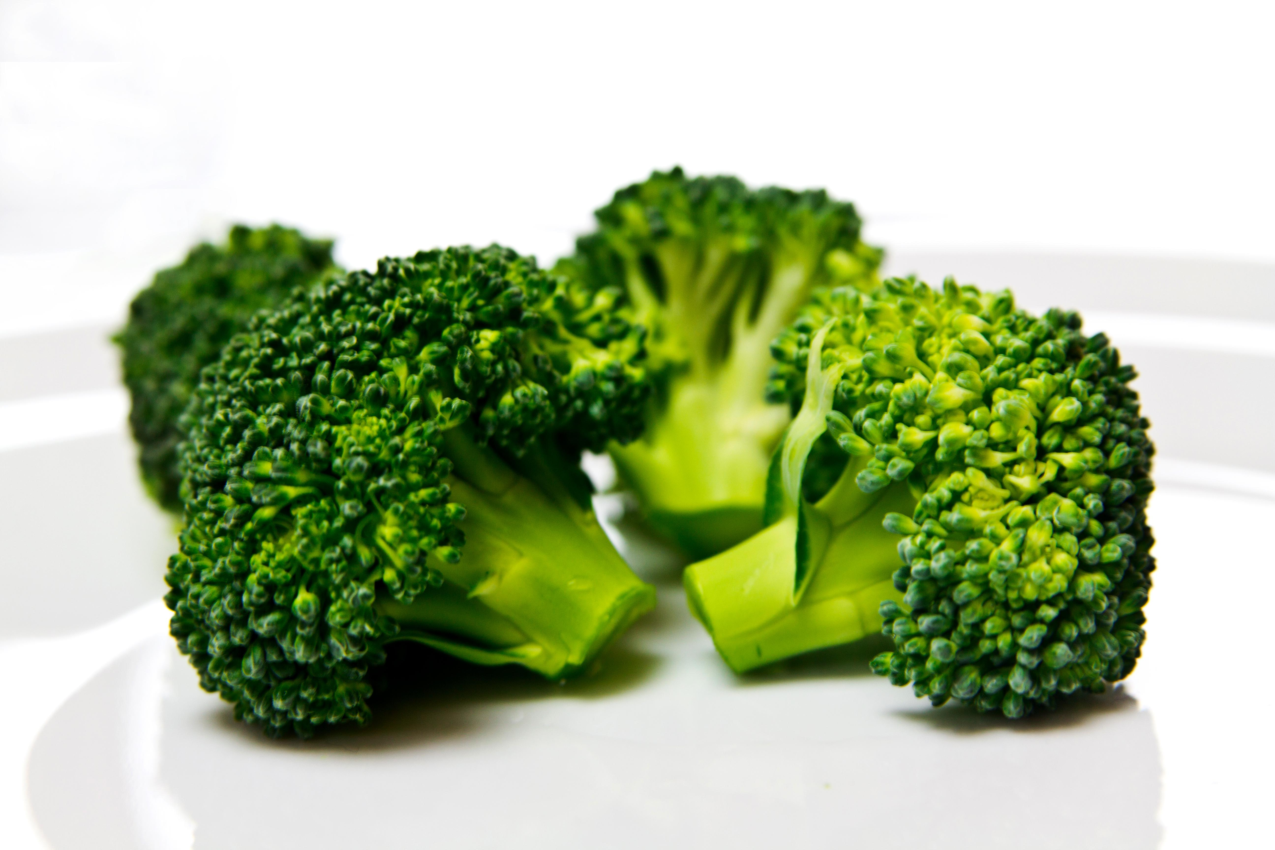 fresh brokkoli florets on white plate
