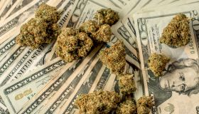 Lots of marijuana on stacks of $20